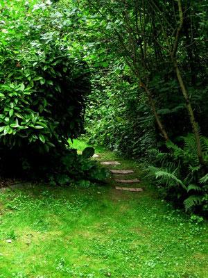 Neue Trittplatten und neuer Rasen verhindern ne Rutschpartie bei feuchtem Wetter