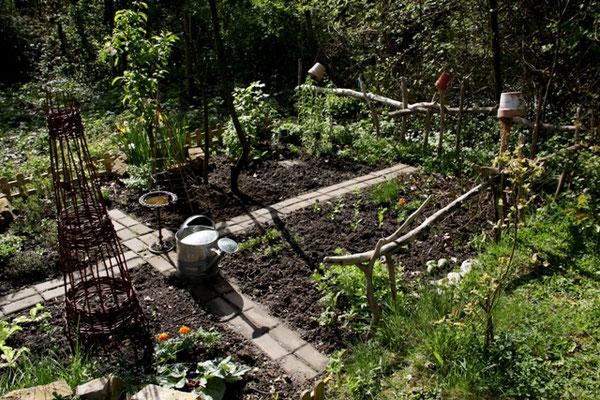 Gemüsebeet in der Nachmittagssonne