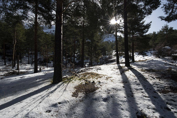 Parque Natural Sierra de Baza, cumbres