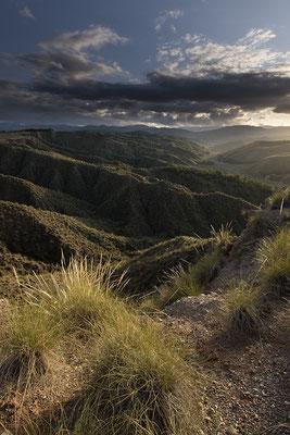 Parque Natural Sierra de Baza, campos de esparto