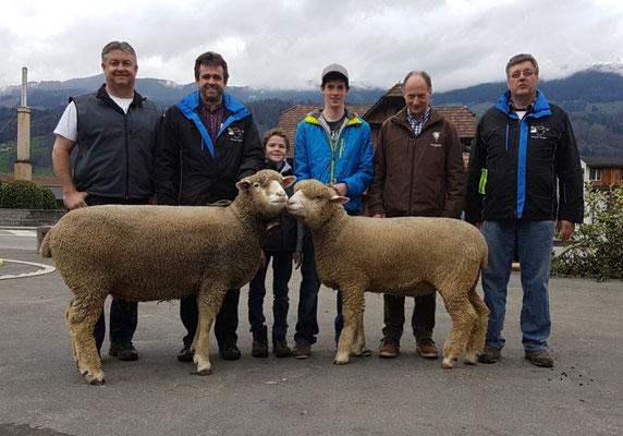 Erfolgreiche Bündner Schafzüchter in Sachseln 2017