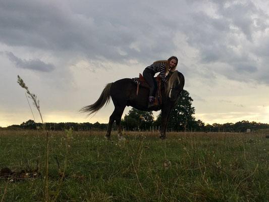 Milkyway ist ein sehr  feines Pferd und braucht  eigentlich kein Schenkel nur die Stimme. Jenny (RB) von seiner Vorbesitzerin hat wieder zu ihm gefunden und hat sich jetzt endlich ihren Traum von einem eigenem Pferd erfühlt.VERKAUFT