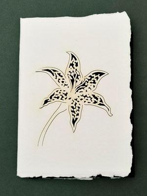 Karte aus Baumwollbütten mit gelasertem Motiv Lilie schwarz- KBaW13