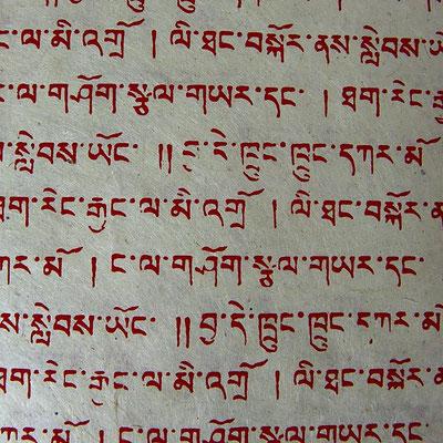 Daphne Papier, Nepal - LOK 195 (5,50€)