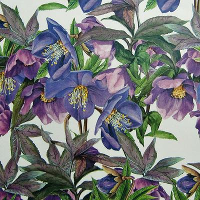 Florentiner Papiere: Blumen und Blüten - IT 320