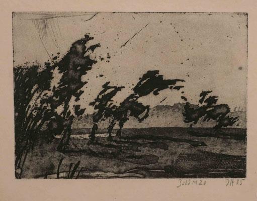 """Horst Janssen, """"ohne Titel (Eiderland)"""", Radierung 1985, Sonderausstellung """"Lebensklekse-Todeszeichen"""", Sammlung Scharf-Gerstenberg, Berlin"""