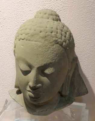 Buddhakopf,Gupta Periode, 5. -6. Jhdt. u.Z.
