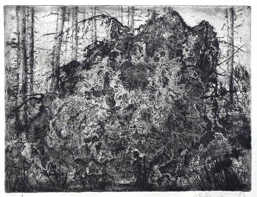 """Baumwurzel"" - Radierung, Aquatinta, Prägedruck"