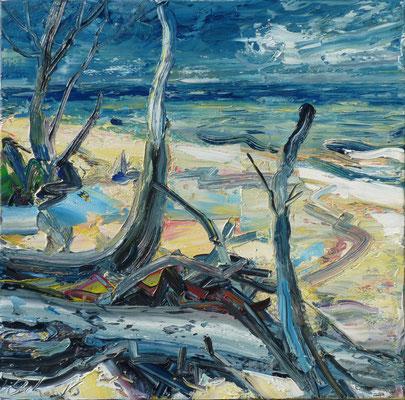Wilder Strand, Öl/Lw  60 x 60cm