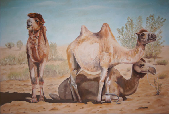 Kamele in Usbekistan 2015, 100 x 70 cm, Preis Fr. 590.-