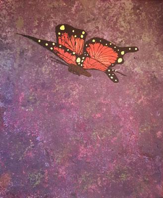 Schmetterling über Lavendelfeld