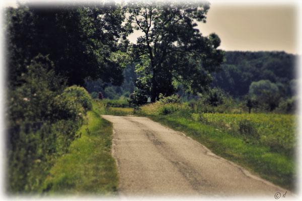 Die kleine Landstraße