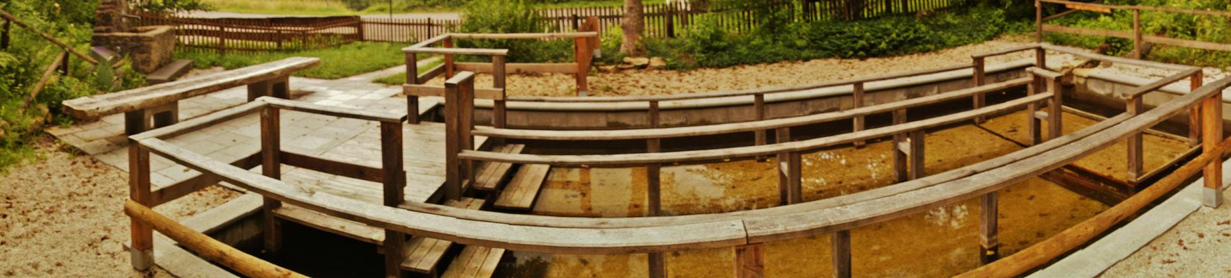 Das Wassertretbecken