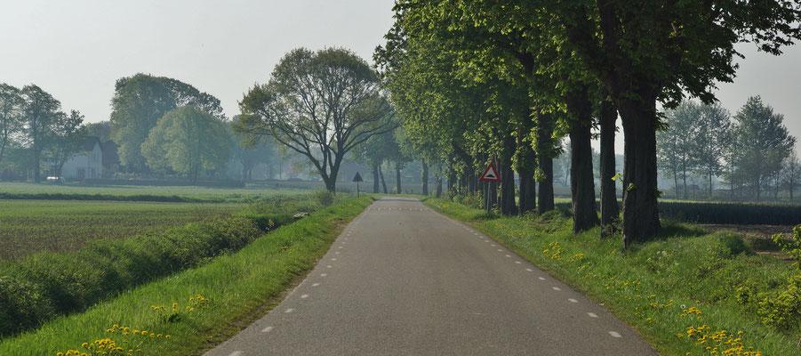 Ruhige Landstraßen ermöglichen eine stressfreie Fahrt