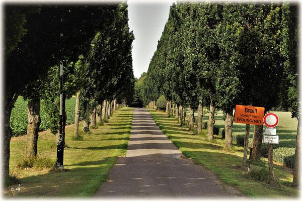 Die Einfahrt zum Schloss Breill