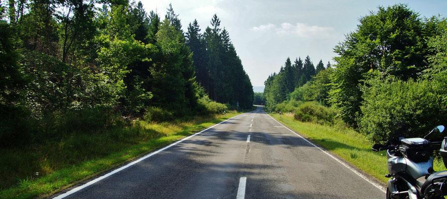 Eine Fahrt durch den Wald