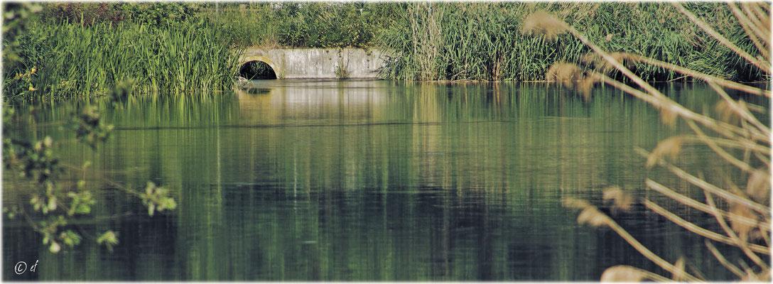 Wasserblicke