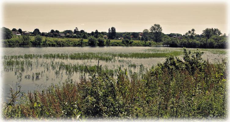 Eine wunderschöne Seenlandschaft bei Lottum