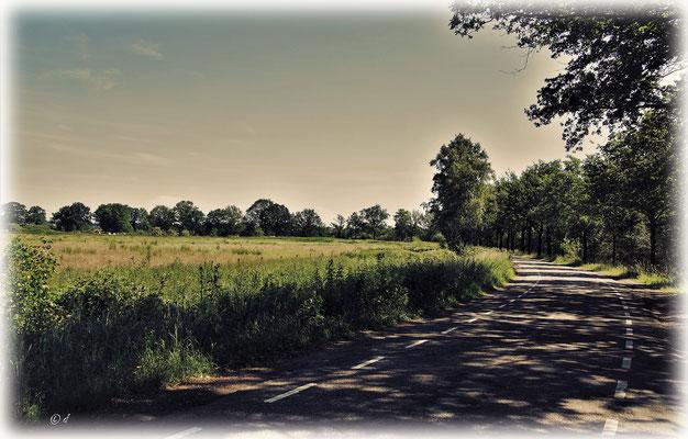 ... umgeben von Feldern & Wiesen ...