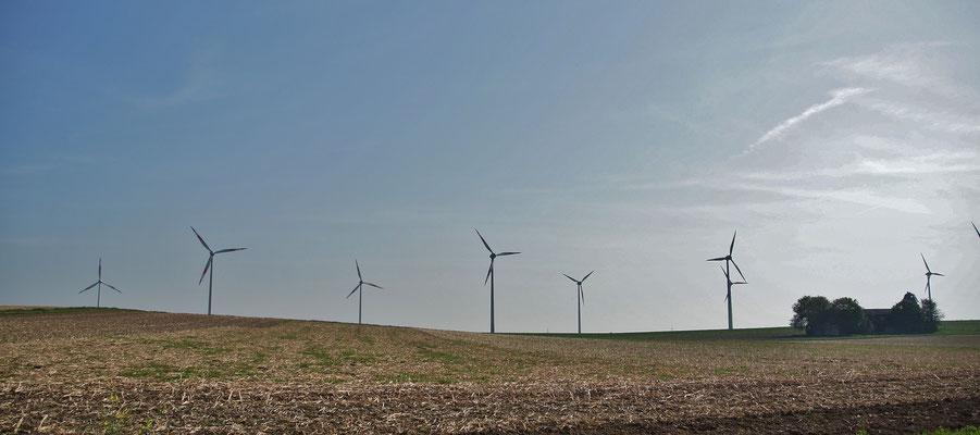 Weite Felder, Windkraftanlagen sorgen für alternative Energie