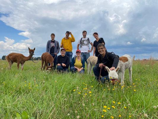 Teamtag mit Alpakawanderung