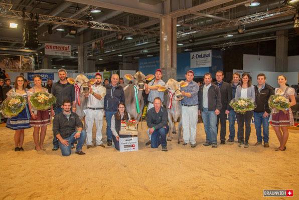 Die drei Championkühe mit dem Vorstand, Ehrendamen, Nummerngirl, Richter, usw.. An der IGBS Ausstellung 2019