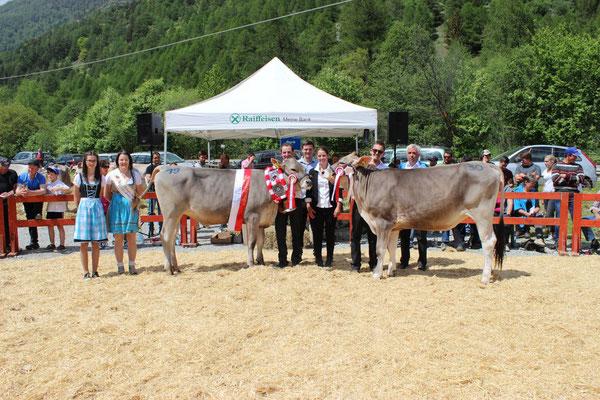 Die Rinderchampion und Vize Champion