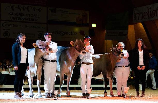 Vize Champion an der Rindernight Show Wattwil beim Showmanship Wettbewerb