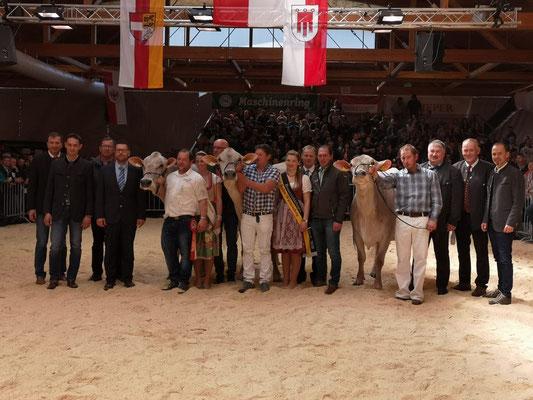Champion Kühe bei den mittleren