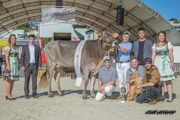 Das Champion Rind von Claudio Gisler