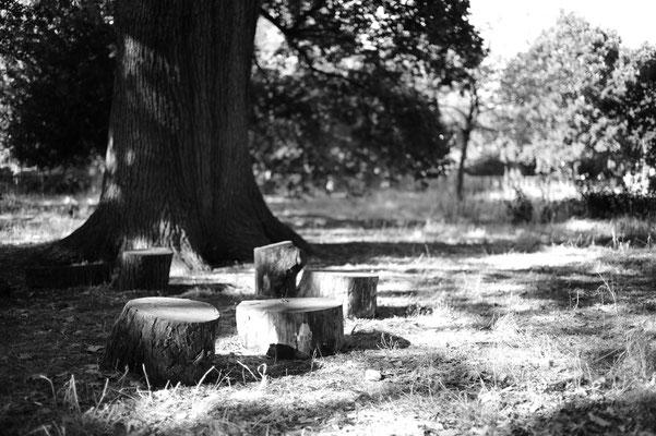Walpole Park, UK, Summilux 35mm