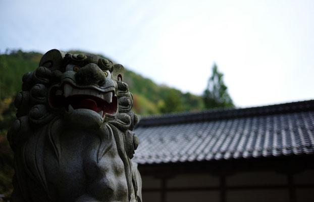 GIFU, JAPAN, Summilux 35mm