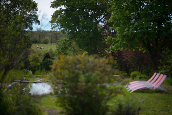 Les Chambres du Vivier, chambres d'hôtes à Durbuy, Ardenne - Le jardin