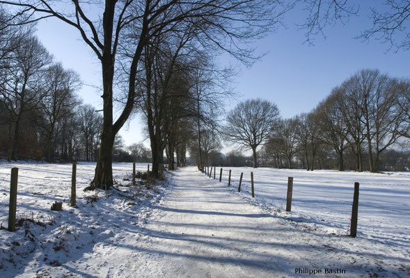 Durbuy | Randonnées pédestre sous la neige