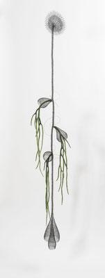 170 cm de haut / fil de fer - laine feutrée