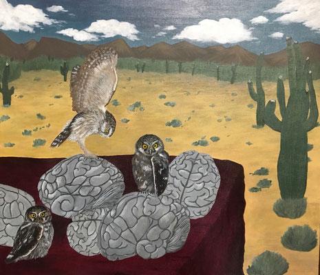 梟連作:砂漠の整脳師