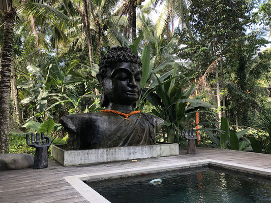Basundari Yoga Retreat
