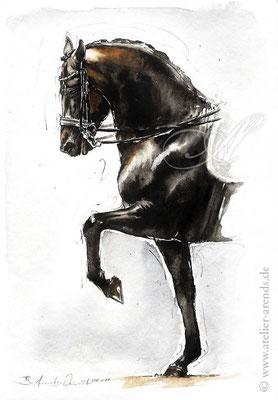 Pferdeportrait gemalt in Aquarell nach Fotovorlafge, Format 10 x 15 cm. Fotovorlage: © Jaques Toffi