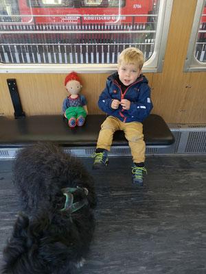 Auf Reisen: Milo Leon mit seinem kleinen Leon... ;-)