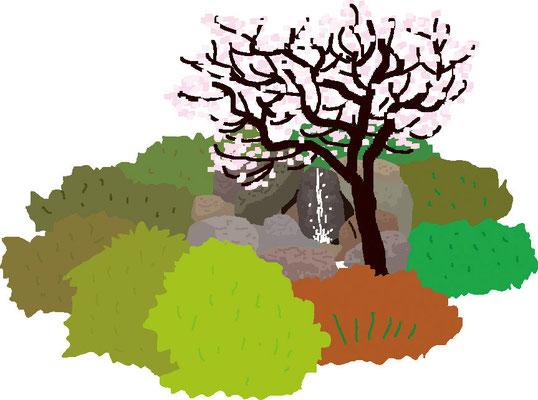 植物 自然 緑 庭園 公園  梅