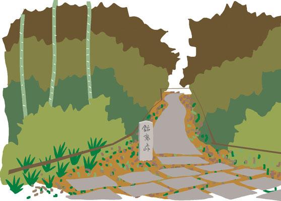 植物 自然 緑 庭園 公園