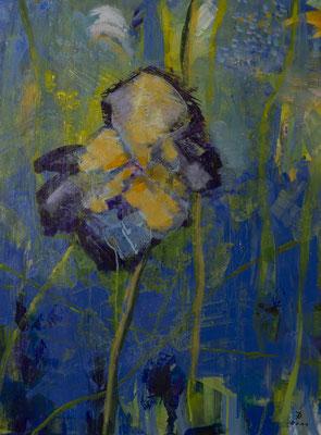Iris  20111 80x60  A.a.L.  verkauft