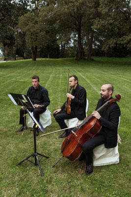 Musicisti al matrimonio