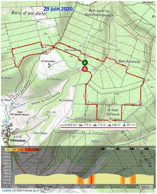 Le 29 juin 2020 La Forêt de GIBEAUMEIX