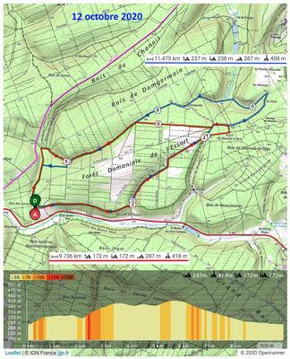 Le 12 octobre 2020, Forêt de l'Essart à RIGNY-SAINT-MARTIN