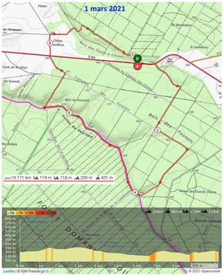 Le 1er mars 2021 , les jonquilles en forêt de GONDRECOURT et AMANTY