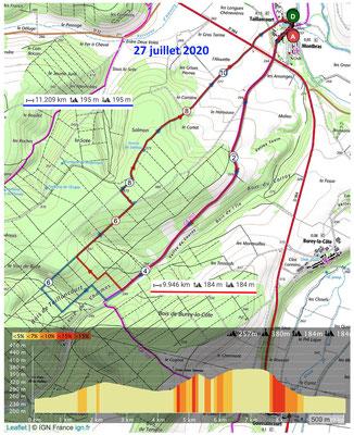 Le 27 juillet 2020, Forêt de TAILLANCOURT