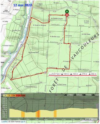 Le 12 mai 2020 Forêt de VAUCOULEURS