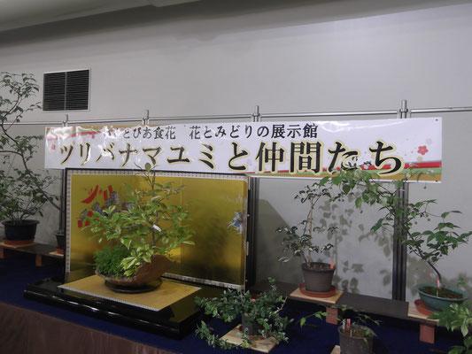 いくとぴあ食花2017.7月