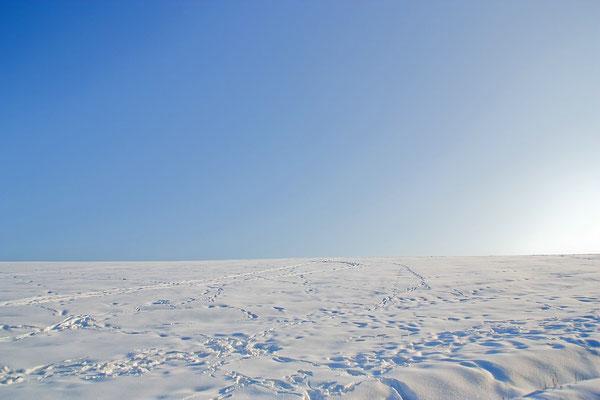 Schnee bei Oberweissach